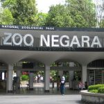 Zoo Negara FREE Entrance Ticket Giveaway 送出免费入门票!